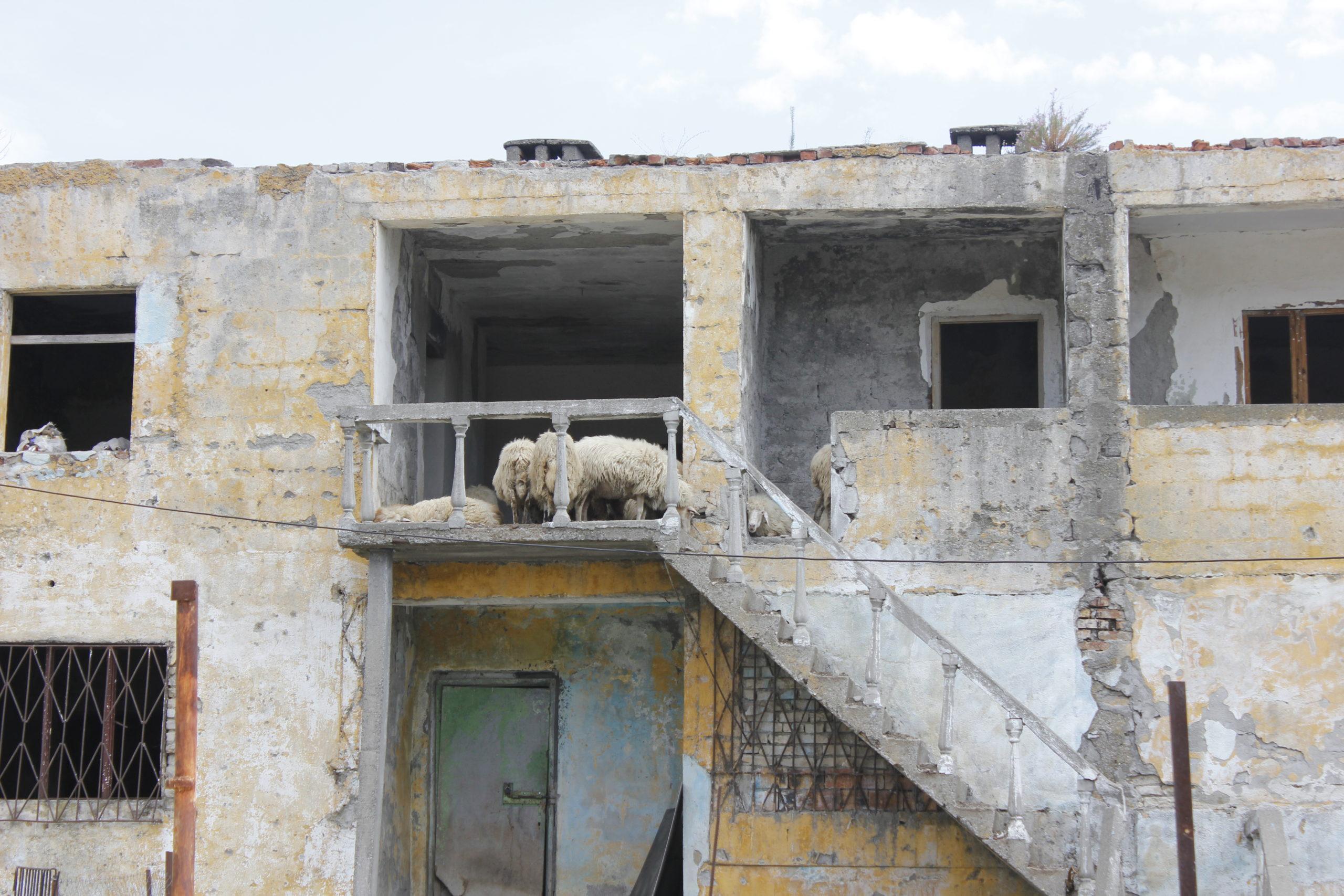 4x4 Abenteuerreise: Albanien so nah und doch so fremd 2